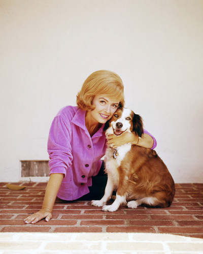 Picture of Dorothy Malone