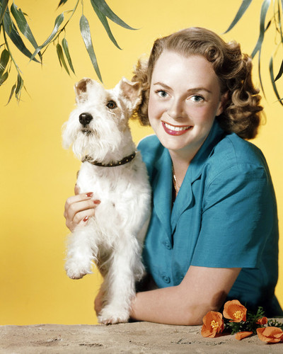 Picture of June Lockhart