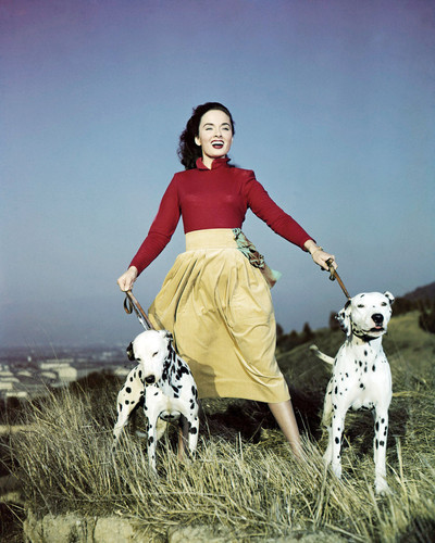 Picture of Ann Blyth