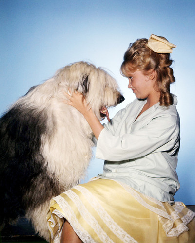 Picture of Hayley Mills in Summer Magic