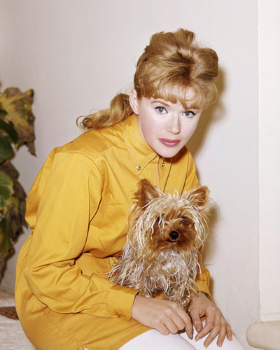 Picture of Connie Stevens