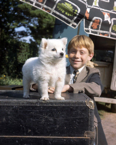 Picture of Bill Mumy