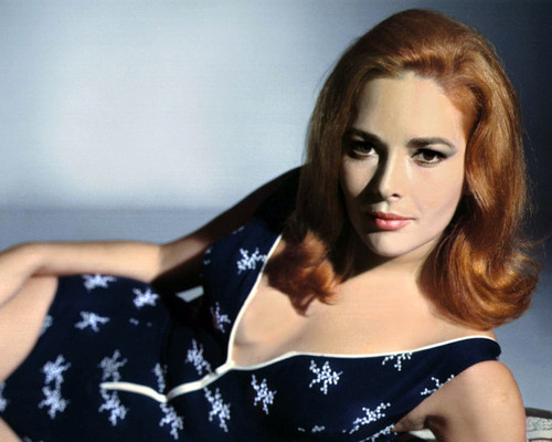 Picture of Karin Dor