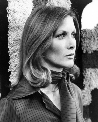Picture of Susan Howard in Sidewinder 1