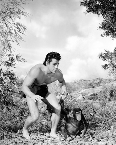 Picture of Gordon Scott in Tarzan's Fight for Life