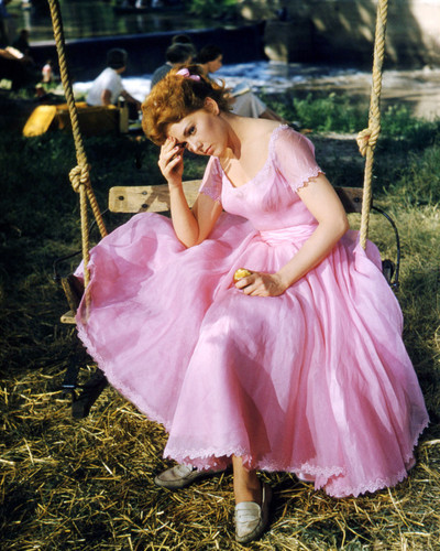 Picture of Kim Novak in Picnic