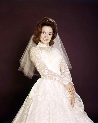 Picture of Shelley Fabares