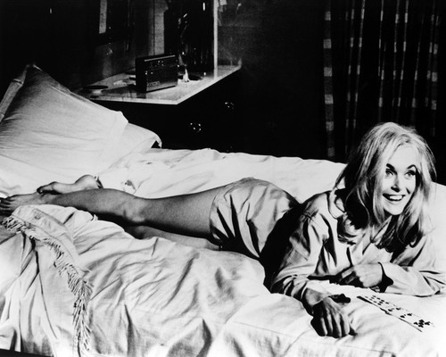 Picture of Shirley Eaton