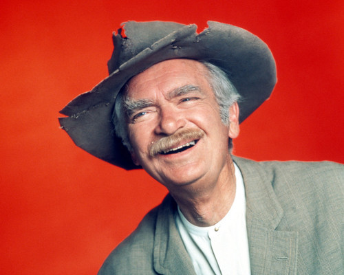 Picture of Buddy Ebsen in The Beverly Hillbillies