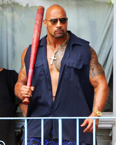 Picture of Dwayne Johnson in Pain & Gain