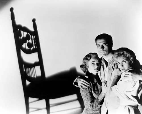 Picture of John Gavin in Psycho