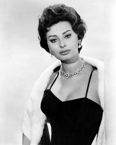 Picture of Sophia Loren in Houseboat