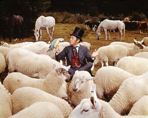 Picture of Rex Harrison in Doctor Dolittle
