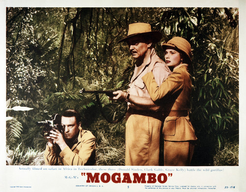 Picture of Mogambo