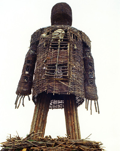 Picture of The Wicker Man