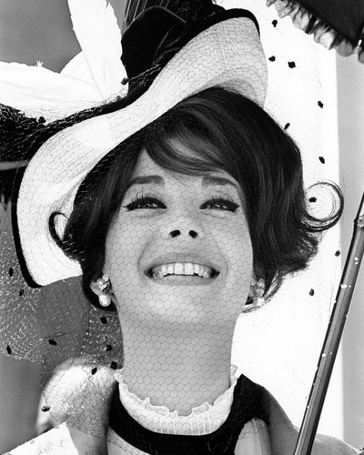 Picture of Natalie Wood in The Great Race