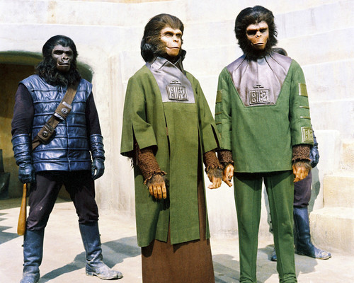 Picture of Roddy McDowall in Planet of the Apes