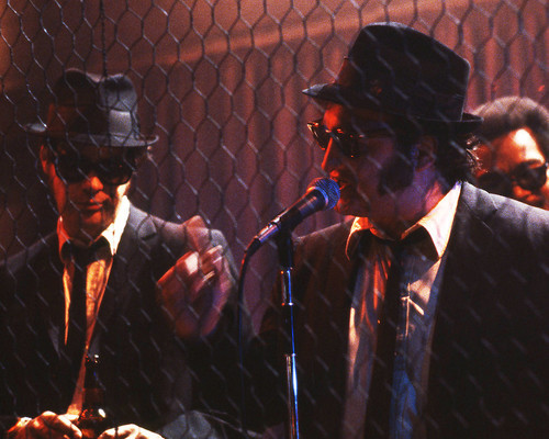 Picture of John Belushi in The Blues Brothers