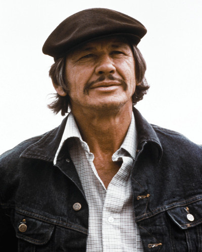 Picture of Charles Bronson in Mr. Majestyk