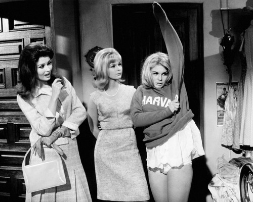 Picture of Ann-Margret in The Pleasure Seekers