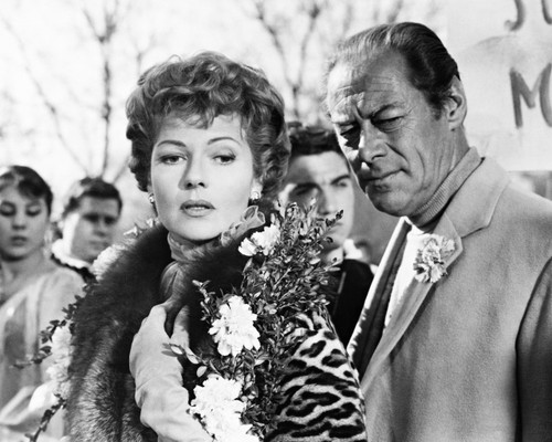 Picture of Rex Harrison in The Happy Thieves
