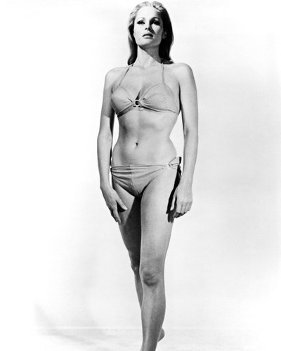 Picture of Ursula Andress in Nightmare in the Sun