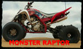 Raptor 700 Monster Duals