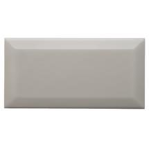 Neri Silver Mist 4x8 Beveled