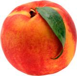 Peach Elberta - 15 Gal