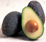 Avocado Hass - 15 Gal