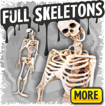 Full Skeleton Halloween Props
