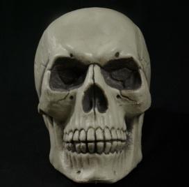 skull.jpeg