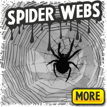 Spiderwebs and Spider Decorations for Halloween