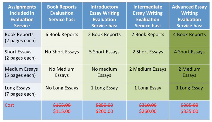 Essay Services