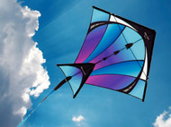 Switch Dual / Single Kite