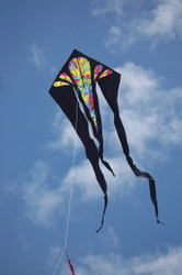 Flo Tail 6.5 Delta Kite - Rainbow Orbit