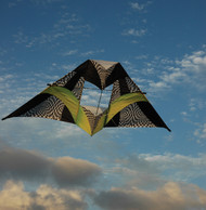 12 ft. Box Delta Kite - Citrus Op-Art