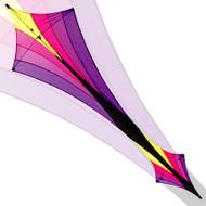 Phoenix Void