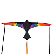 Rainbow Bird Wings
