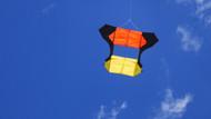 Cody Aldershot Kite