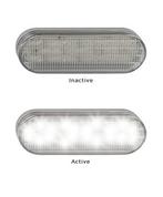 5505W Reverse Light 12v Single Pack