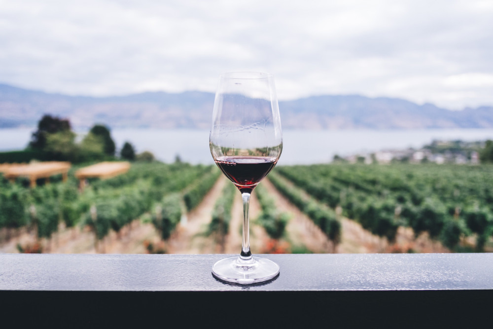 The Dos and Don'ts of Wine Tasting