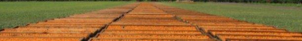 br-farms-8.jpg