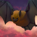A friendly, fluffy great evening bat in flight over a pink and purple sunset.