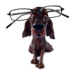 Opti Pets Eyeglass Holder Stand Opti Pets Setter