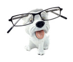 Opti Pets Eyeglass Holder Stand Opti Pets Westie