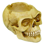 "3"" Tall Skull Ashtray"