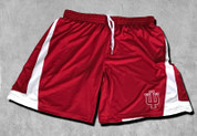 IU IN THE PAINT BASKETBALL SHORTS