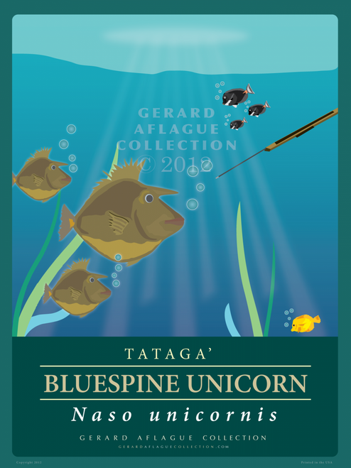 Bluespine (Tataga) Unicorn Fish Poster Illustration - 18x24 inches