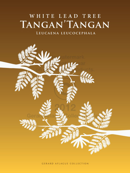 Tangan'tangan (White Lead Tree)